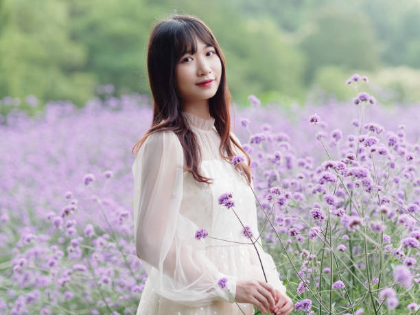 Beautiful woman in white dress posing in purple Verbena Bonariensis flower field, charming Chinese girl with black long hair enjoy her leisure time outdoor. stock photo