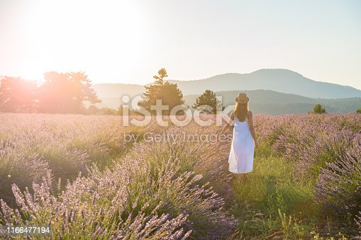 Lavender - Plant, Camera, Photography, One Woman Only, Only Women
