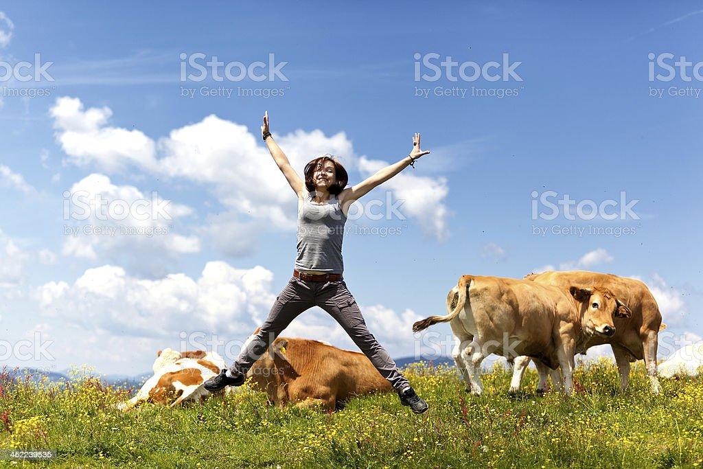 beautiful woman jumping between cattle herd stock photo