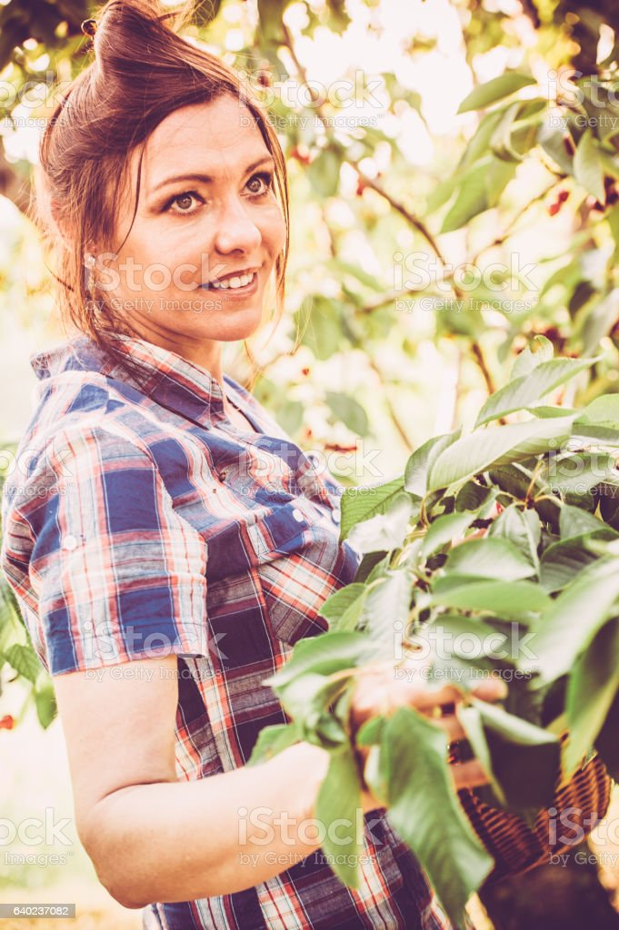 Beautiful Woman Portrait in her Cherry Orchard stock photo