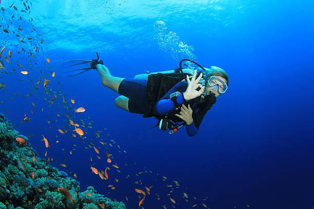 Belle femme plongée sous-marine - Photo