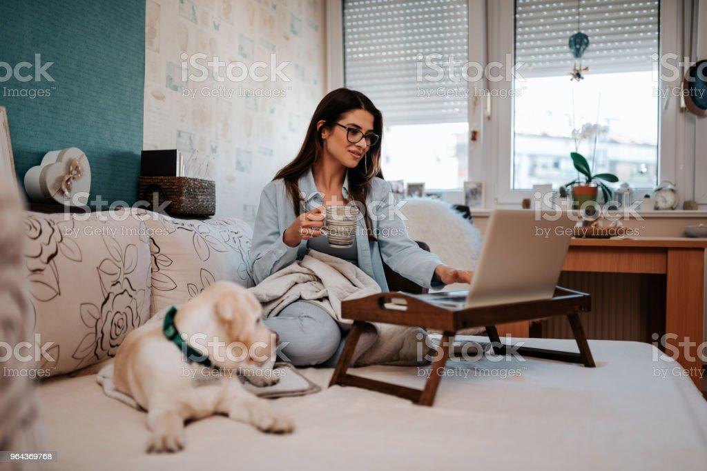 Mulher bonita sentada no sofá e usando o laptop. - Foto de stock de Aconchegante royalty-free