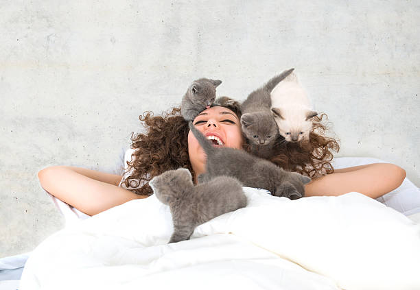 Beautiful woman sleeps in a bed with kitten picture id638171112?b=1&k=6&m=638171112&s=612x612&w=0&h=6hvoe88u6iwwydq9xktpemcx2s4iik q2osgqcjr5ea=