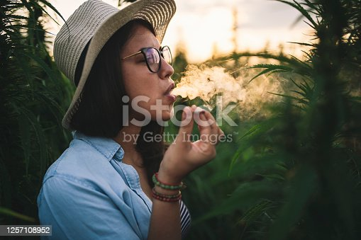 Side view of beautiful woman with hat smoking joint in marijuana plantation at sunset.