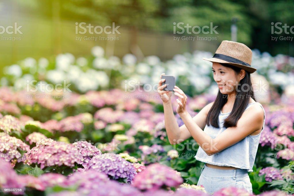 beautiful woman taking selfie in garden royalty-free stock photo