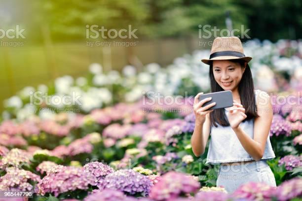Foto de Mulher Linda Tomando Selfie No Jardim e mais fotos de stock de Adulto