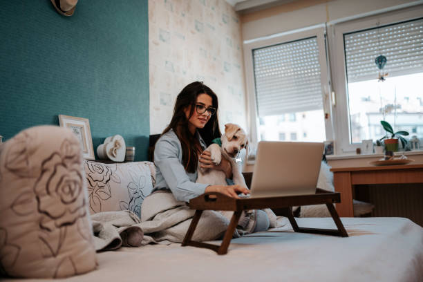 Beautiful woman using laptop with dog in her lap at home picture id1191497210?b=1&k=6&m=1191497210&s=612x612&w=0&h=vbcoogkpdth5ntb0hvfjlsoxbvmwqnwclrelvsq4wck=
