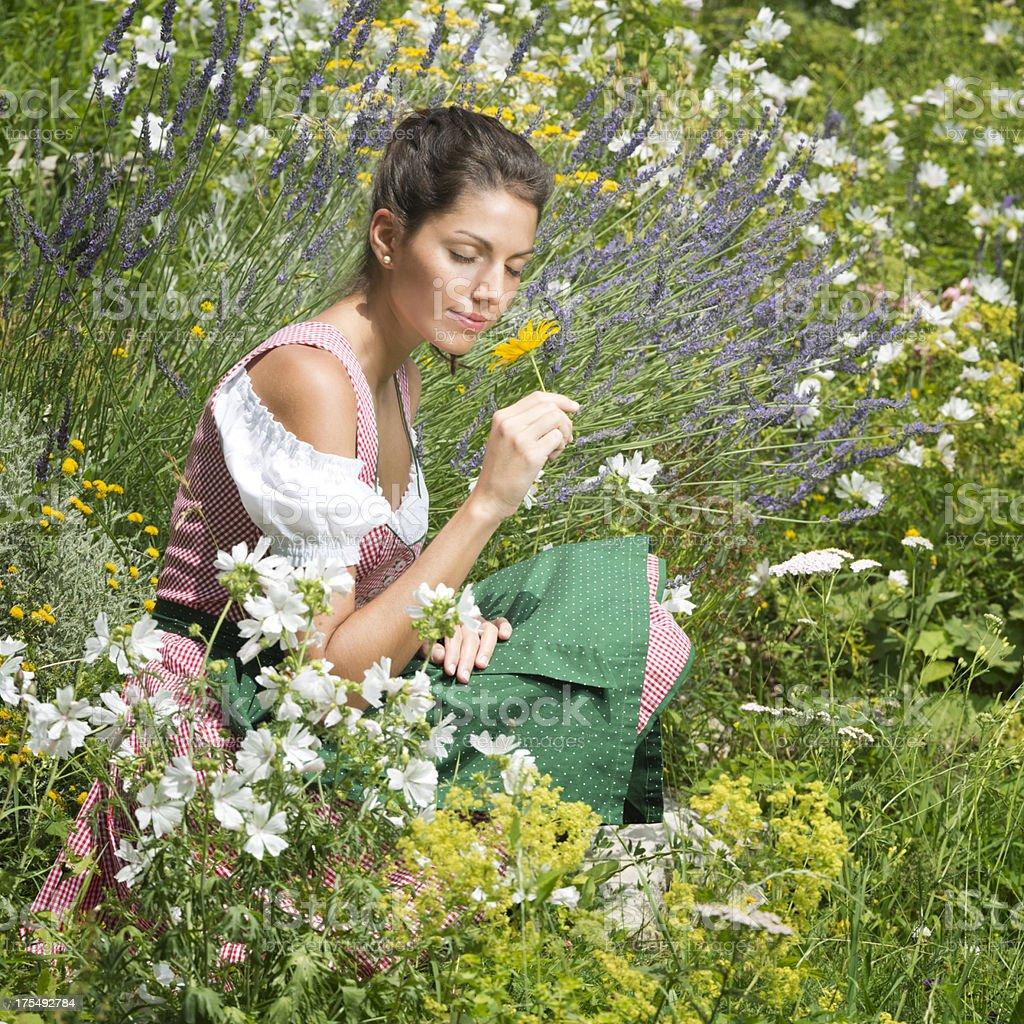 Beautiful woman wearing Dirndl sitting in a Flower Garden (XXXL) stock photo