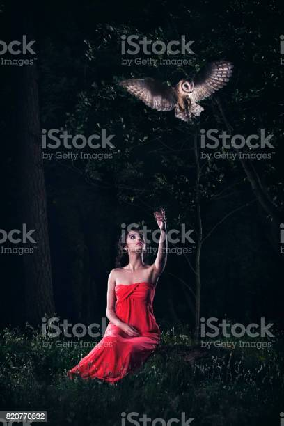 Beautiful woman with an owl picture id820770832?b=1&k=6&m=820770832&s=612x612&h=q7oi wxwboxgu1rptf4ncdlbmzxarxxsytbix5qykwk=