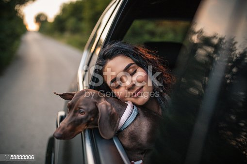 Young woman with dog in car