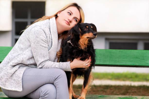 Linda mulher com seu cão de raça misturada pequeno sentado e posando em frente a câmera no banco de madeira no parque da cidade. Retrato do proprietário e o cão de raça metade bonito goza, descansando, acariciando juntos ao ar livre. - foto de acervo