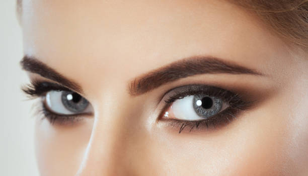 Beautiful Woman with long lashes and beautiful make-up looking at the camera Beautiful Woman with long lashes and beautiful make-up looking at the camera. eyebrow stock pictures, royalty-free photos & images