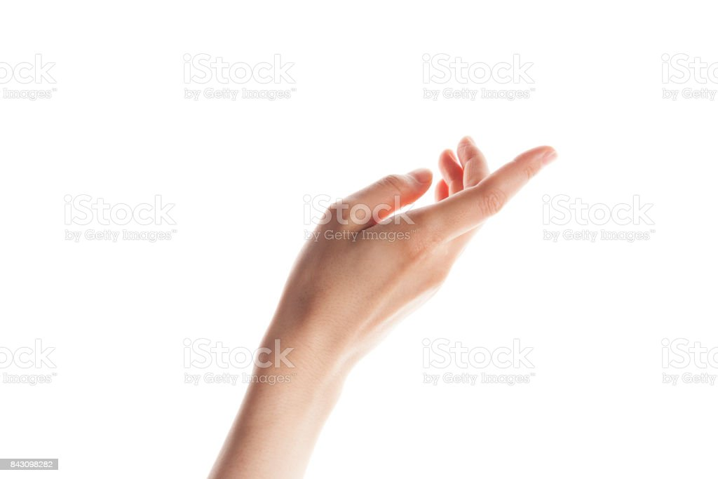 Beautiful woman's hand holding blank space isolated