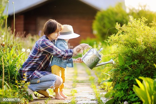 istock Beautiful women and her cute grandson watering plants in the garden at summer sunny day 900998718