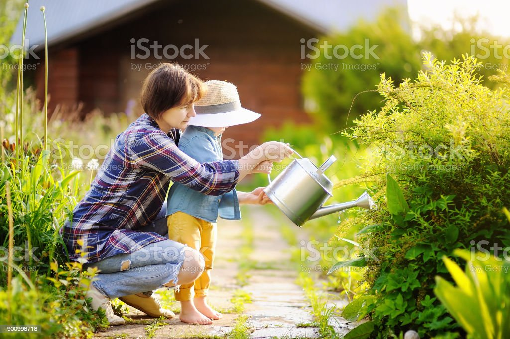 Beautiful women and her cute grandson watering plants in the garden at summer sunny day stock photo