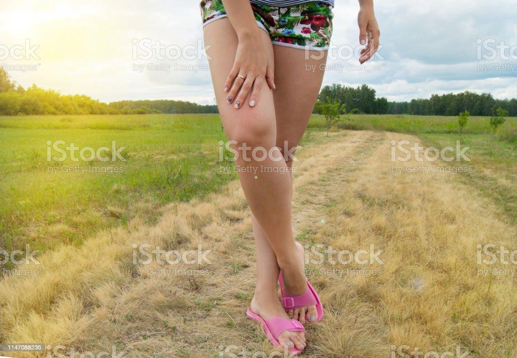 size 40 99079 87175 Schöne Frauenfüße In Flipflops Wandern Auf Gras Im Sommer ...