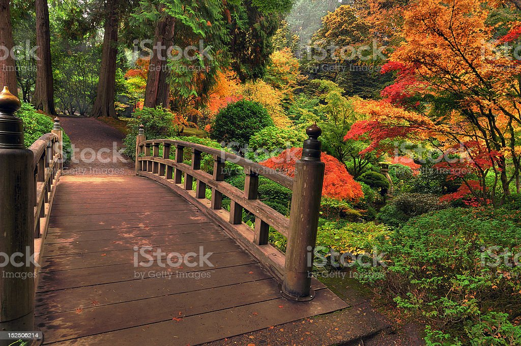 Beautiful wooden Bridge in autumn royalty-free stock photo