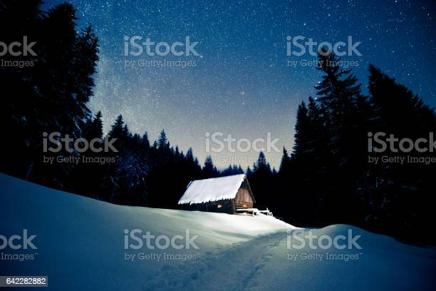 Photo of Beautiful wooden house in the winter forest under the stars