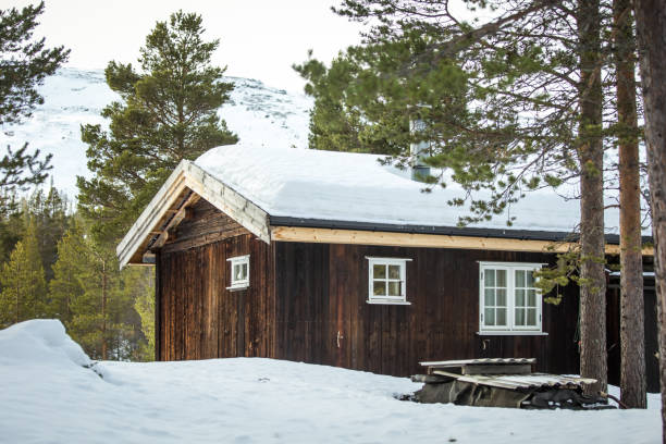 A beautiful wooden house in woods in Norway stock photo