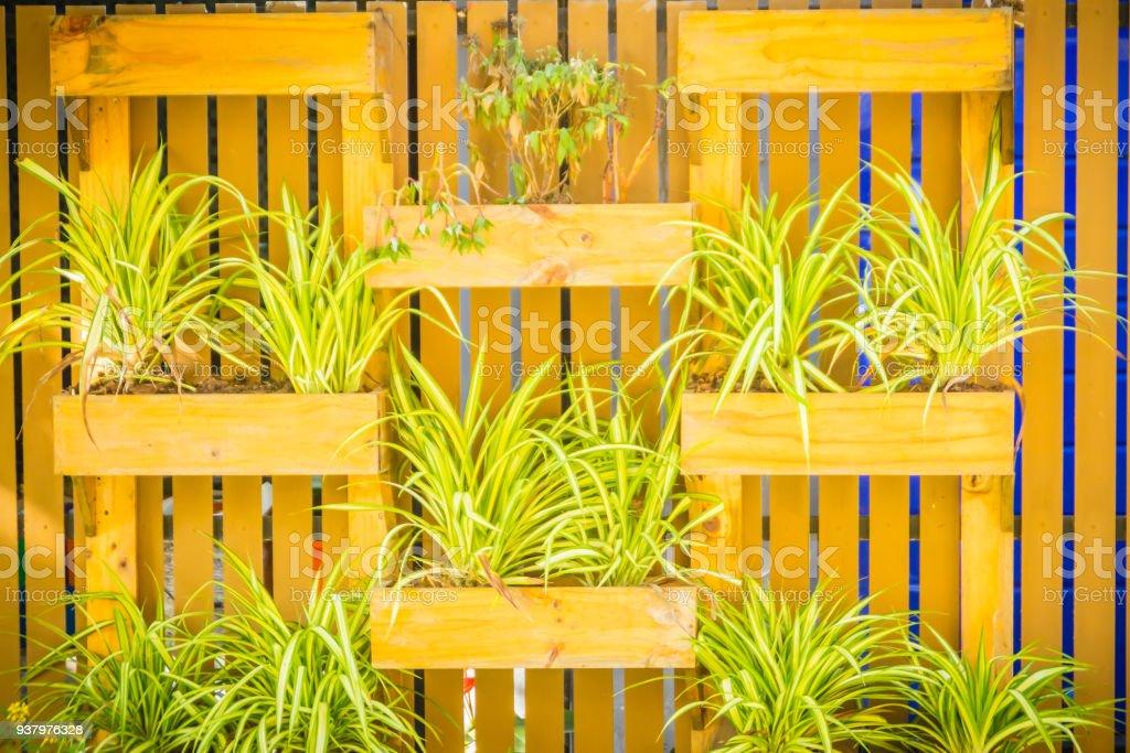Photo libre de droit de Beau Bois Jardin Mur Vertical Avec ...