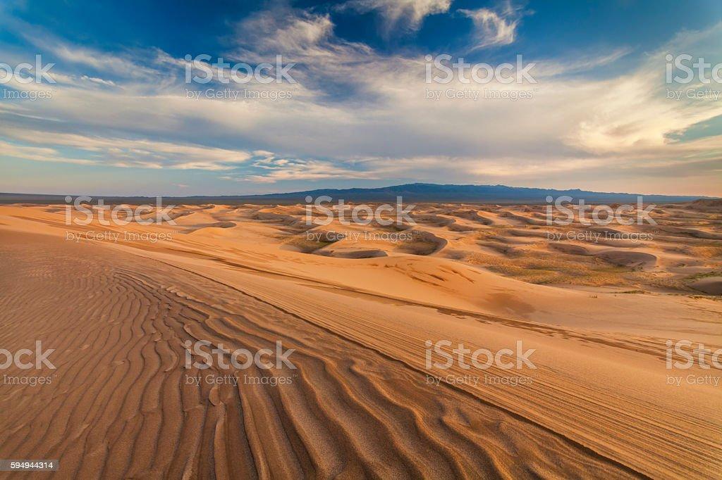 Beautiful yellow dune in the desert. Gobi Desert. Mongolia. stock photo