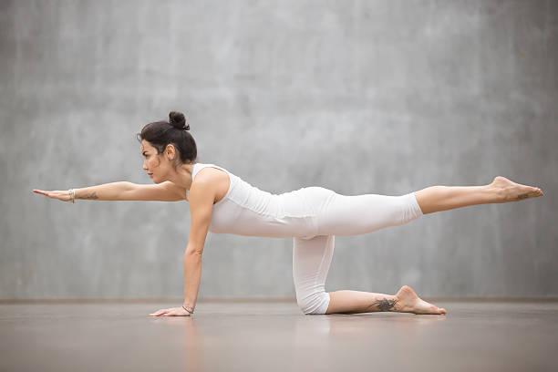 beautiful yogi woman doing bird dog pose - membre photos et images de collection