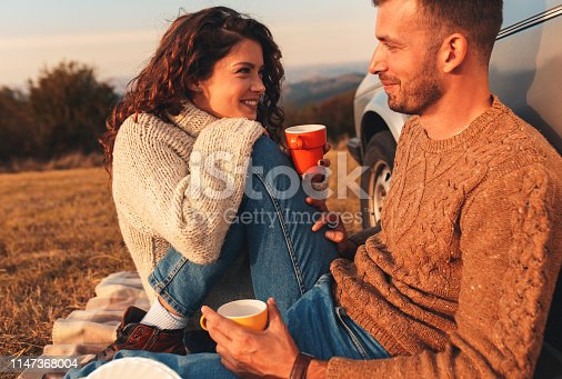 istock Beautiful young couple enjoying picnic time on the sunset. 1147368004