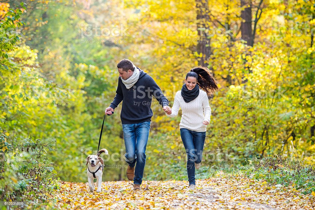 Beautiful young couple with dog running in autumn forest - foto de acervo