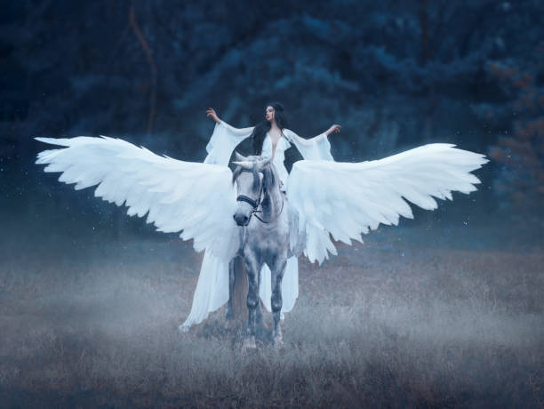 beautiful, young elf, walking with a unicorn. she is wearing an incredible light, white dress. art hotography - pegasus stock photos and pictures