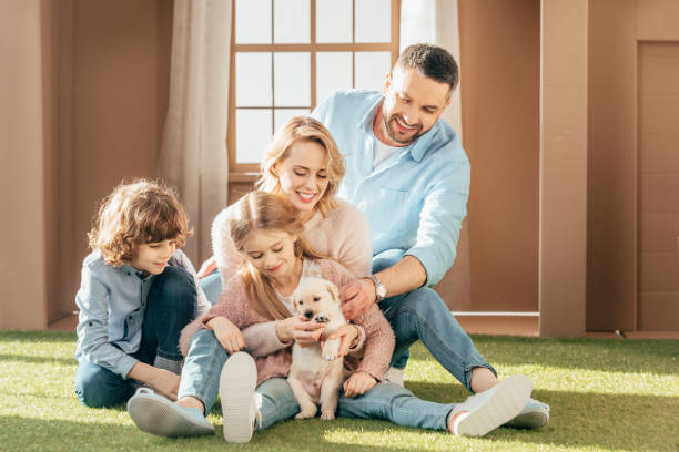 Beautiful young family with yellow lab puppy on yard of cardboard picture id936387684?b=1&k=6&m=936387684&s=612x612&w=0&h=5boxqkikpcnkezwqudjg67mkouoz30dj5stea3toxdy=