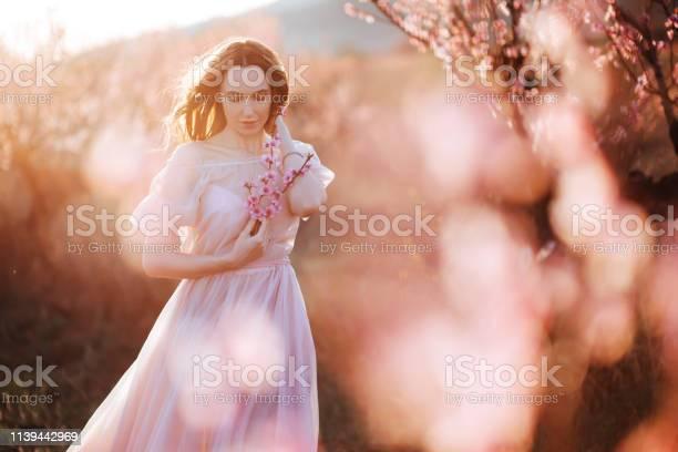 Beautiful young girl under the flowering pink tree picture id1139442969?b=1&k=6&m=1139442969&s=612x612&h=bjn4fq8xnxd0bz clzxjt z 0wfsrlazdcd3sz4x238=