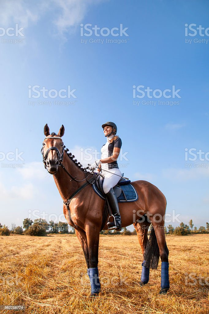 Beautiful young horsewoman sitting on a horse. stock photo
