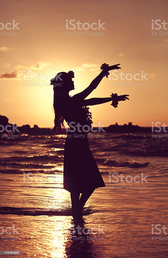Beautiful Young Hula Dancer royalty-free stock photo