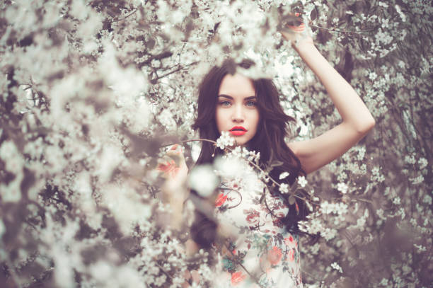 Beautiful young lady in the garden of cherry blossoms stock photo