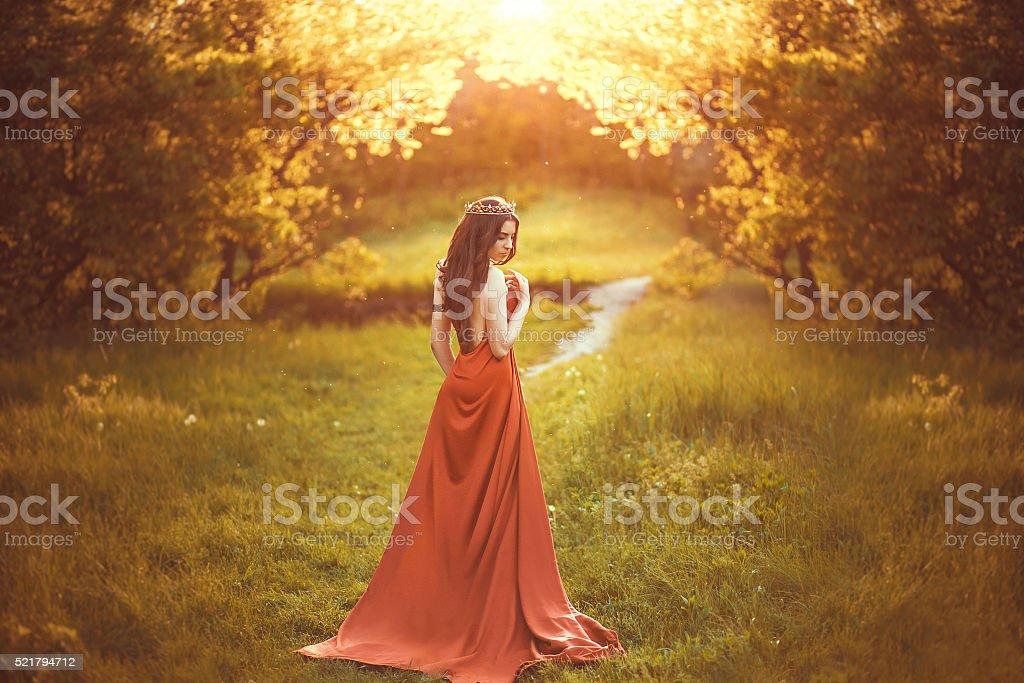 Beautiful young princess stock photo