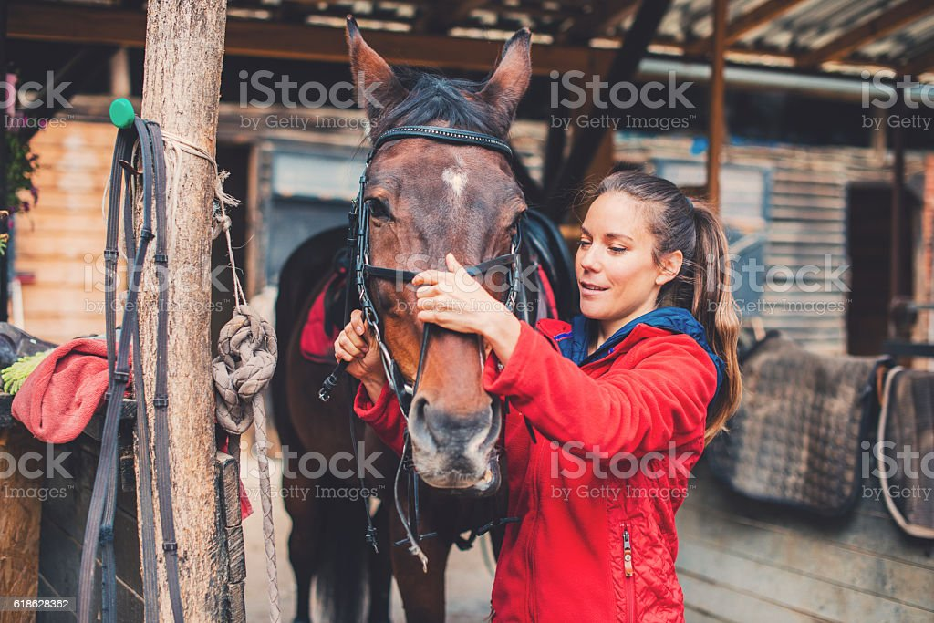 Beautiful young rider preparing a horse for equestrian training stock photo