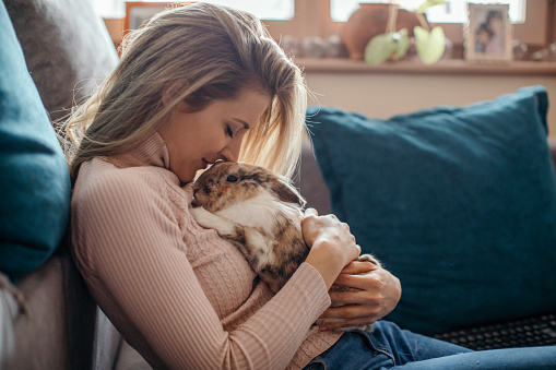 Beautiful young woman cuddling with her bunny pet. She holds the bunny, strokes him and kisses. Bunny is very calm and enjoys time with his owner. They are are spending time at home.