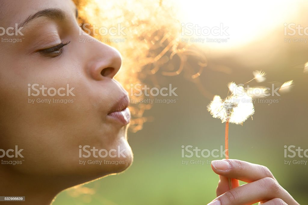 Beautiful young woman blowing dandelion flower stock photo