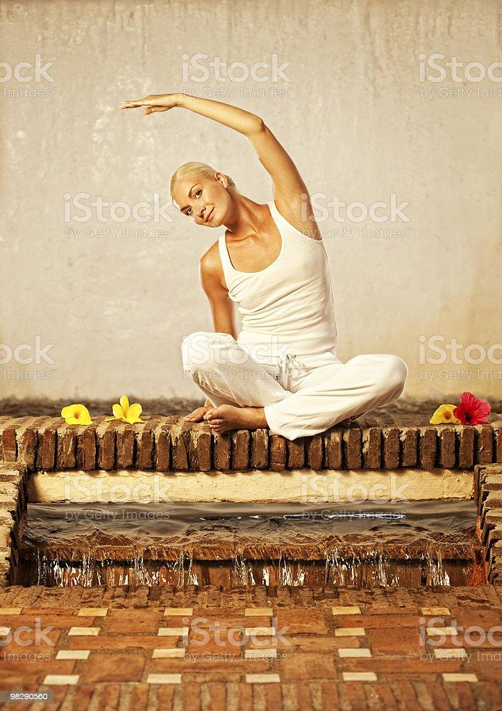 아름다운 젊은 여자의 요가 운동 수행 royalty-free 스톡 사진