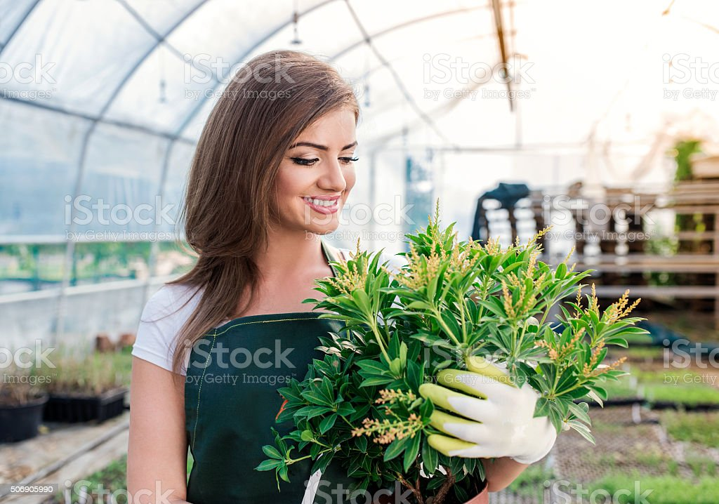 Beautiful young woman gardening stock photo