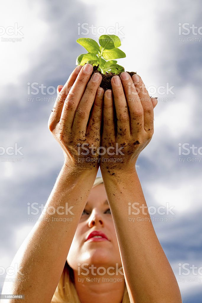 Beautiful young woman holding up seedling. stock photo