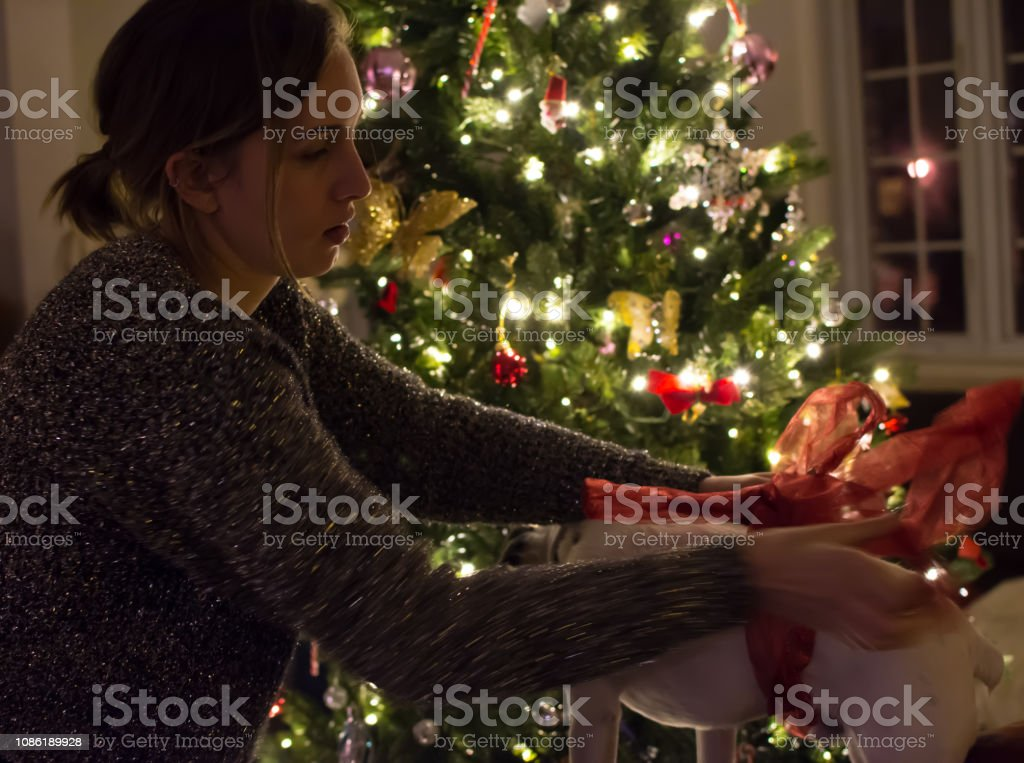 Beautiful young woman in cozy home next to illuminated Christmas tree putting red bow on cute dog stock photo