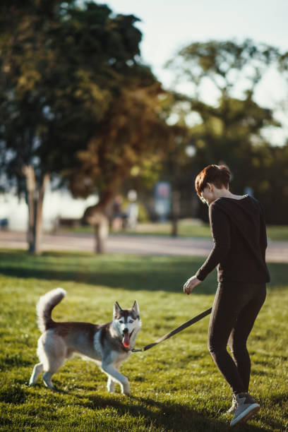 Beautiful young woman playing with funny husky dog outdoors picture id695888256?b=1&k=6&m=695888256&s=612x612&w=0&h=ai9rqbxpdc6itio5gghms0fn57nrfq1fjidu7z c4ei=