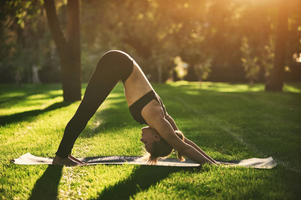 Beautiful young woman practices yoga asana downward facing dog in the park at sunset stock photo