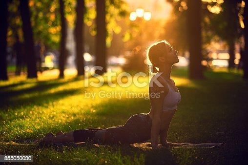 Beautiful sporty fit yogini woman practices yoga asana upward facing dog in the park at sunset