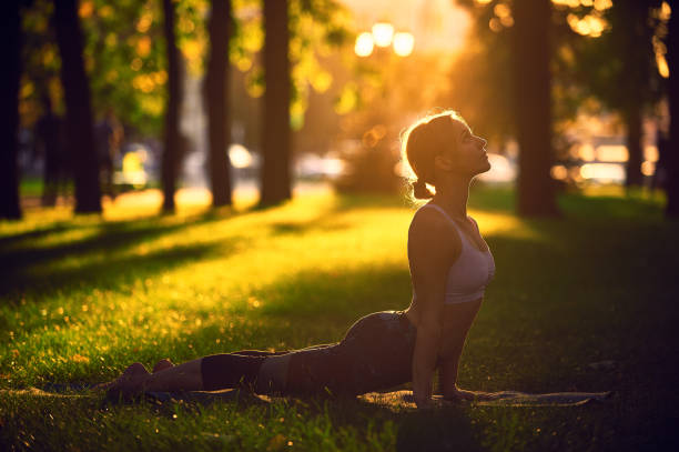 Beautiful young woman practices yoga asana upward facing dog in the park at sunset Beautiful sporty fit yogini woman practices yoga asana upward facing dog in the park at sunset upward facing dog position stock pictures, royalty-free photos & images