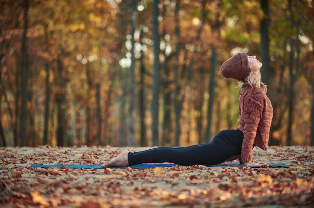 Beautiful young woman practices yoga asana upward facing dog on the wooden deck in the autumn park. Beautiful young woman practices yoga asana upward facing dog on the wooden deck in the autumn park upward facing dog position stock pictures, royalty-free photos & images