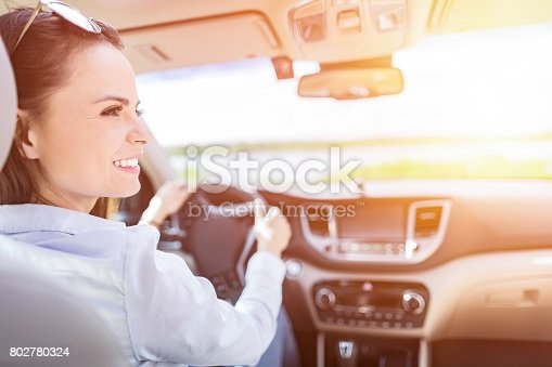627864748 istock photo Beautiful young woman sitting in the interior of a new car with a smile. 802780324