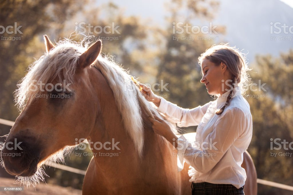 Beautiful Young Woman Taking Care of her Horse stock photo