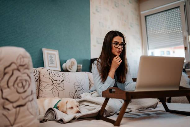 Hermosa mujer joven usando computadora portátil en la cama. Lindo cachorro durmiendo a su lado. - foto de stock